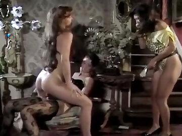 Hot floozy far a sexy lingerie fucks a ecumenical with strap-on dildo